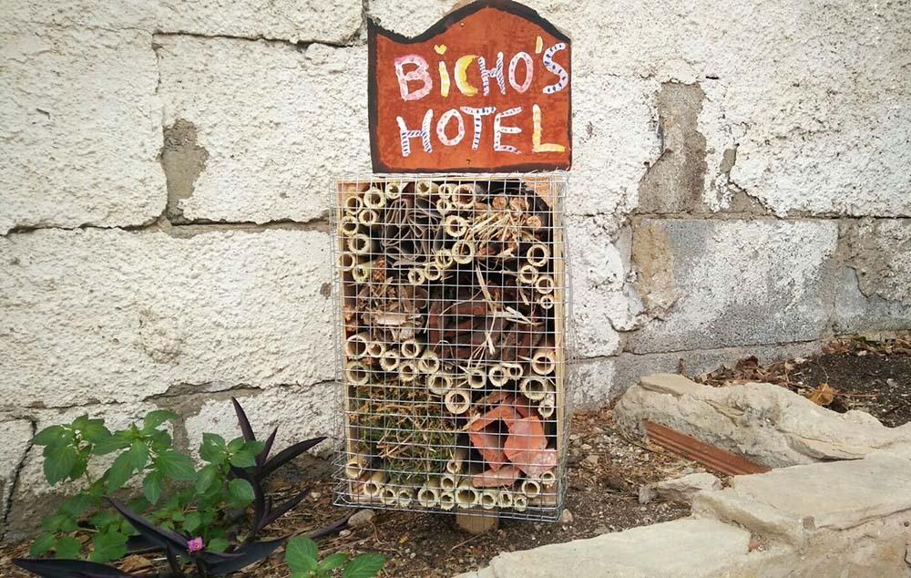 06-HOTEL_INSECTOS-COLOCADO_CASA_AVVVEDAT_web