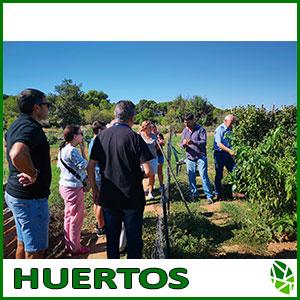 baner_HUERTOS-URBANOS-ACTIVIDADES-WEB