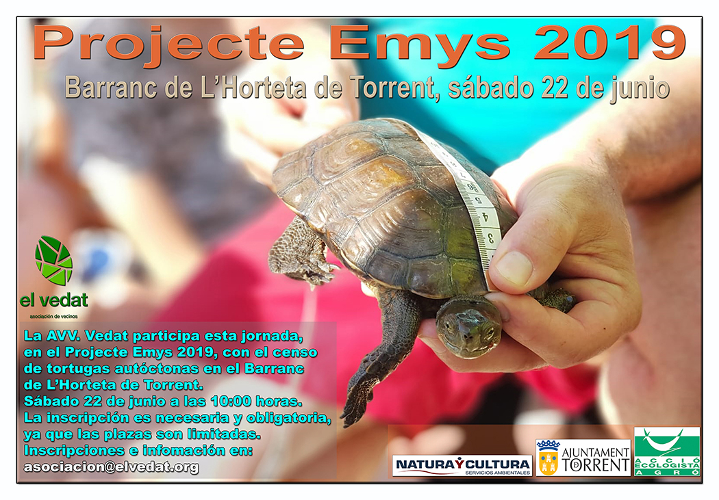 PROJECTE_EMYS_2019_AVVVEDAT_TORRENT_VERD